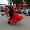 Ленинградская область готовится «культурно» удивить